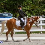 FEI Dressage Show Bermuda, March 5 2014-28