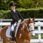 FEI Dressage Show Bermuda, March 5 2014-29