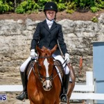 FEI Dressage Show Bermuda, March 5 2014-3