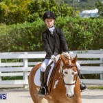 FEI Dressage Show Bermuda, March 5 2014-30