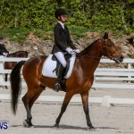 FEI Dressage Show Bermuda, March 5 2014-32