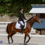 FEI Dressage Show Bermuda, March 5 2014-33
