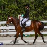 FEI Dressage Show Bermuda, March 5 2014-34