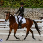 FEI Dressage Show Bermuda, March 5 2014-35