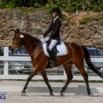 FEI Dressage Show Bermuda, March 5 2014-37