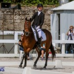 FEI Dressage Show Bermuda, March 5 2014-38