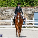 FEI Dressage Show Bermuda, March 5 2014-4