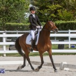 FEI Dressage Show Bermuda, March 5 2014-40