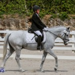 FEI Dressage Show Bermuda, March 5 2014-46