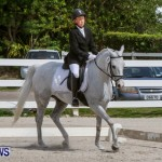 FEI Dressage Show Bermuda, March 5 2014-47
