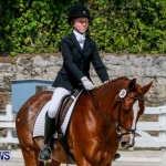 FEI Dressage Show Bermuda, March 5 2014-5