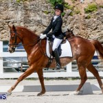 FEI Dressage Show Bermuda, March 5 2014-6