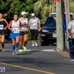"Validus ""Running of the Bulls"" 5K Bermuda, March 30 2014-134"