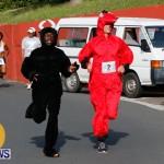 "Validus ""Running of the Bulls"" 5K Bermuda, March 30 2014-159"