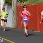 "Validus ""Running of the Bulls"" 5K Bermuda, March 30 2014-164"