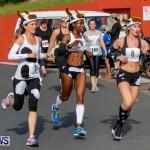 "Validus ""Running of the Bulls"" 5K Bermuda, March 30 2014-182"