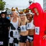 "Validus ""Running of the Bulls"" 5K Bermuda, March 30 2014-28"