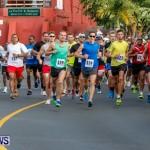 "Validus ""Running of the Bulls"" 5K Bermuda, March 30 2014-32"