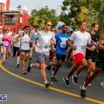 "Validus ""Running of the Bulls"" 5K Bermuda, March 30 2014-35"