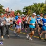 "Validus ""Running of the Bulls"" 5K Bermuda, March 30 2014-45"