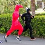 "Validus ""Running of the Bulls"" 5K Bermuda, March 30 2014-59"