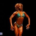 BBFF Bermuda Bodybuilding and Fitness Extravaganza, April 12 2014-104
