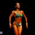 BBFF Bermuda Bodybuilding and Fitness Extravaganza, April 12 2014-108
