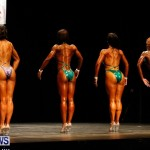 BBFF Bermuda Bodybuilding and Fitness Extravaganza, April 12 2014-121