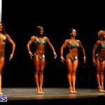 BBFF Bermuda Bodybuilding and Fitness Extravaganza, April 12 2014-123