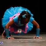 BBFF Bermuda Bodybuilding and Fitness Extravaganza, April 12 2014-17