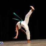 BBFF Bermuda Bodybuilding and Fitness Extravaganza, April 12 2014-67