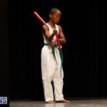 BBFF Bermuda Bodybuilding and Fitness Extravaganza, April 12 2014-70