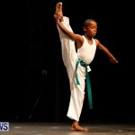 BBFF Bermuda Bodybuilding and Fitness Extravaganza, April 12 2014-73