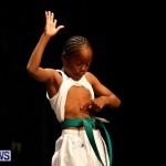 BBFF Bermuda Bodybuilding and Fitness Extravaganza, April 12 2014-76