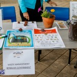 Bermuda Bee Fair, April 12 2014-1