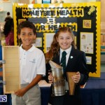 Bermuda Bee Fair, April 12 2014-25