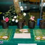 Bermuda Bee Fair, April 12 2014-27