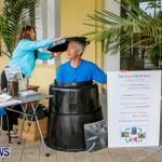 Bermuda Bee Fair, April 12 2014-3