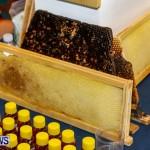Bermuda Bee Fair, April 12 2014-43