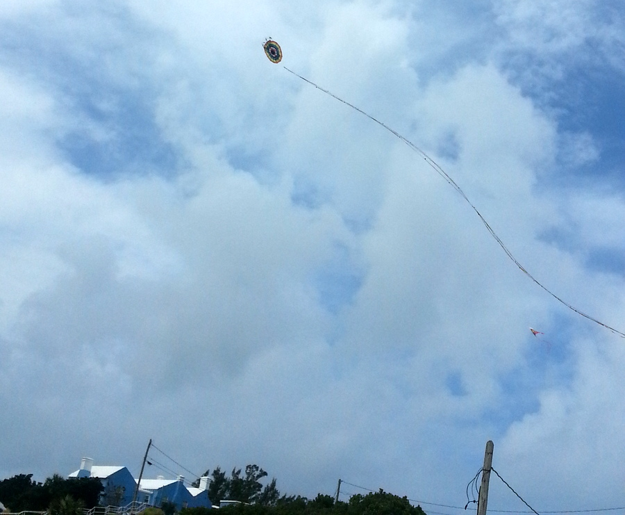 Bermuda In Loving Memory Kite 2014 (1)