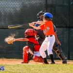 YAO Youth Baseball Bermuda, April 26 2014 (10)