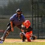 YAO Youth Baseball Bermuda, April 26 2014 (17)