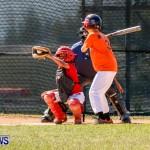 YAO Youth Baseball Bermuda, April 26 2014 (3)