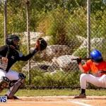 YAO Youth Baseball Bermuda, April 26 2014 (51)