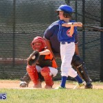 Youth Baseball Bermuda, April 19 2014-2