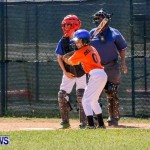 Youth Baseball Bermuda, April 19 2014-30
