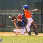 Youth Baseball Bermuda, April 19 2014-33