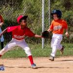 Youth Baseball Bermuda, April 19 2014-38