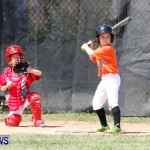Youth Baseball Bermuda, April 19 2014-41