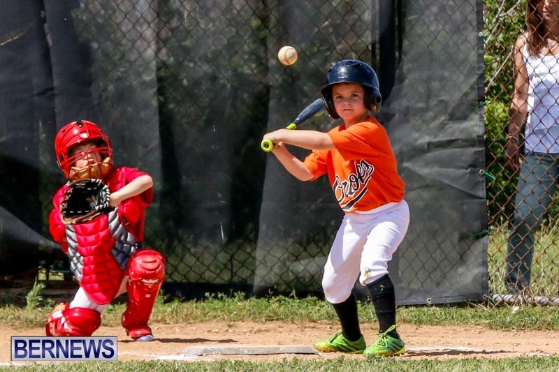 Youth Baseball Bermuda, April 19 2014-45